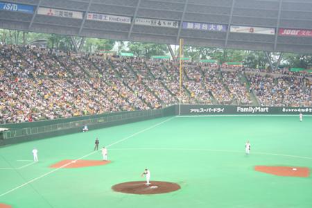 プロ野球 阪神 対 西部戦